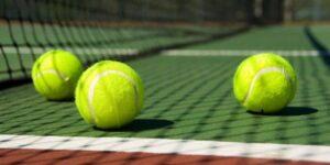 Penn Control Plus Tennis Balls