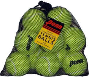 Penn Pressureless Non-Pressurized Tennis Balls