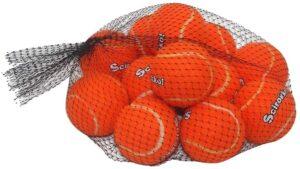 SCIROKKO 12 Pack Dog Squeaky Tennis Balls