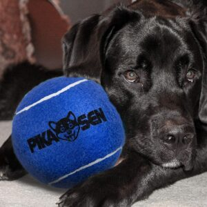 PIKASEN Dog Squeaky Tennis Balls