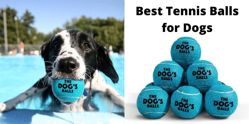 Dog Tennis Balls, Quality Dog Toys