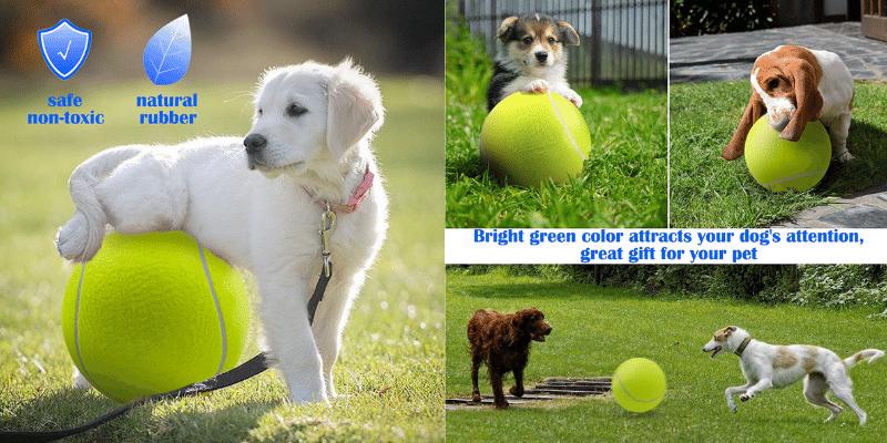 Dog Tennis Ball Large