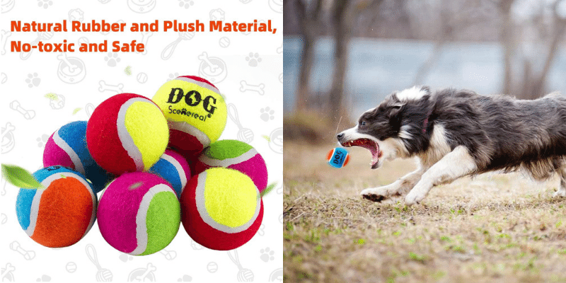Squeaky Tennis Balls for Dog
