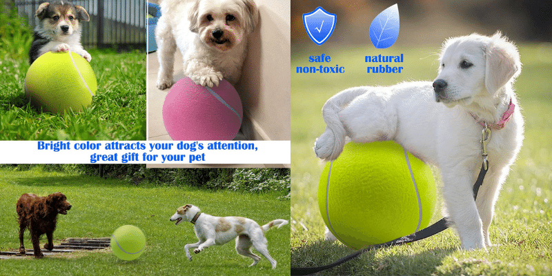 best tennis balls for dogs
