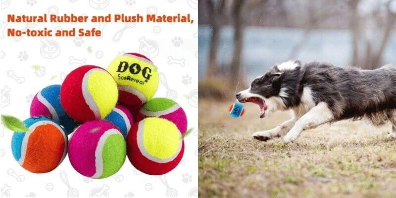 dog tennis balls bulk
