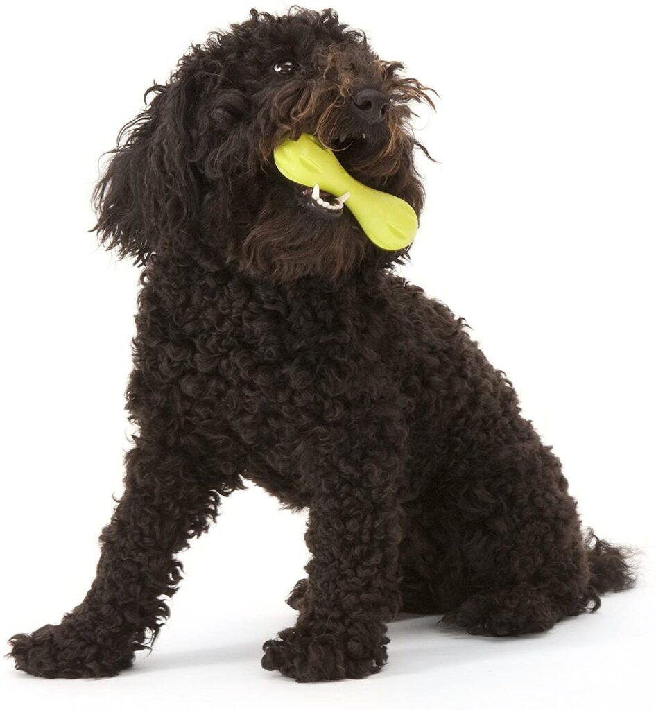 WEST PAW Zogoflex Hurley Dog