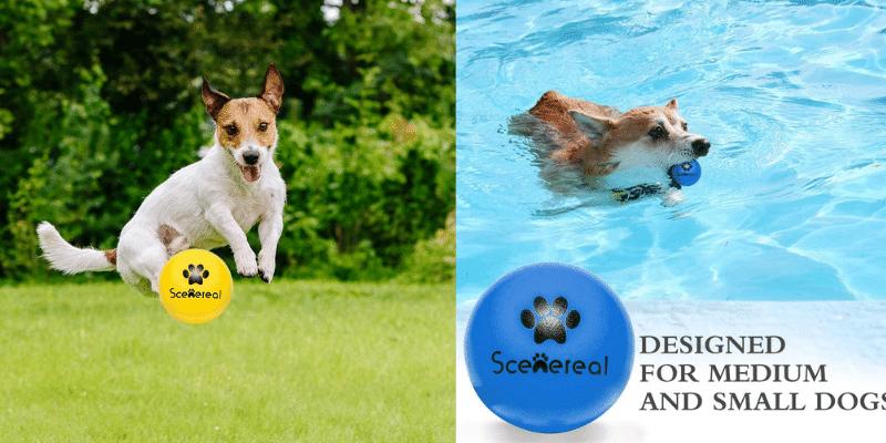 SCENEREAL Floatable Dog Rubber Ball